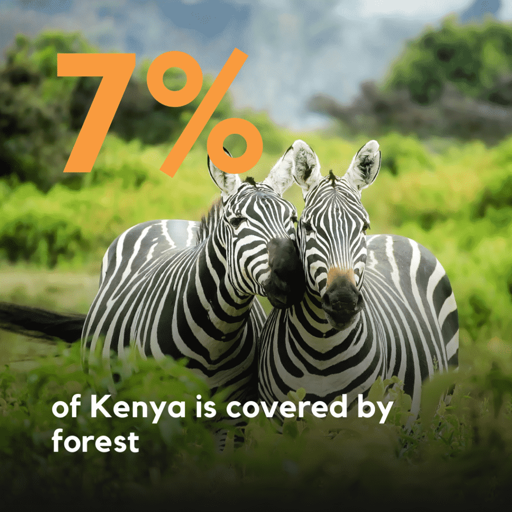7% of Kenya is covered by forest